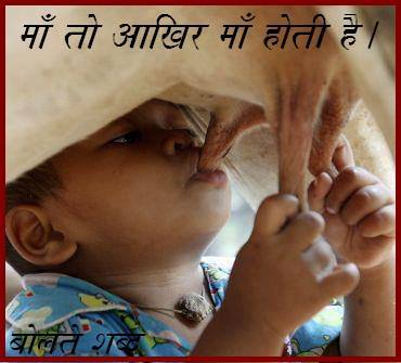 boy drinking cow milk